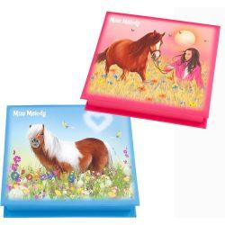 Miss-Melody-jegyzettomb-dobozban-pink